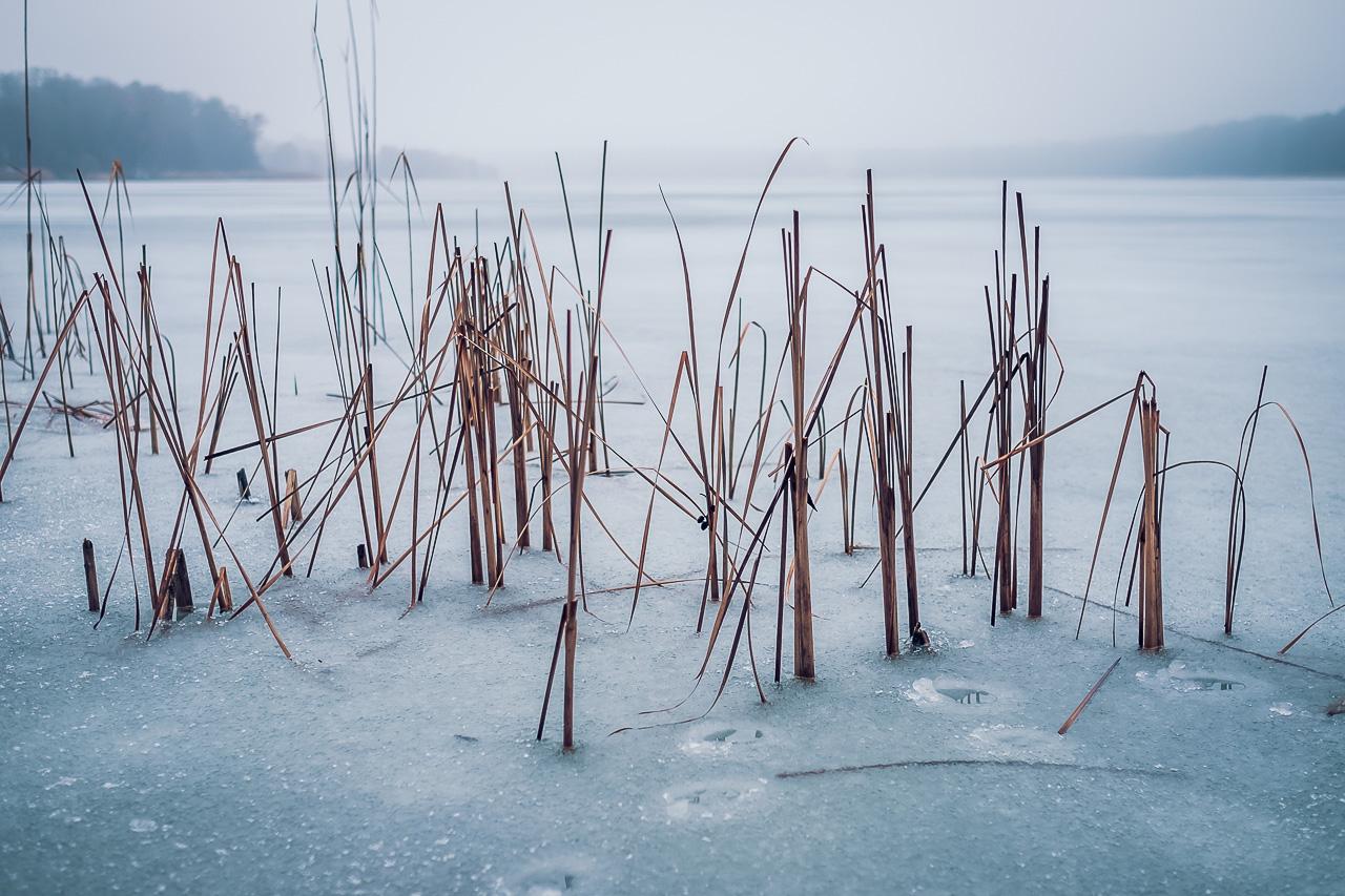icy lake Strausberg