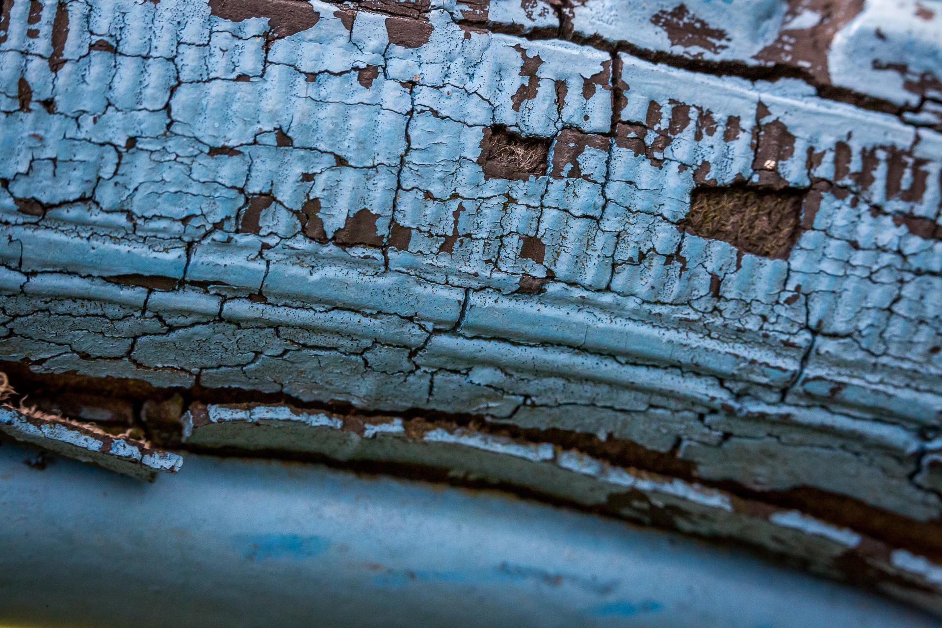 blue bike tire
