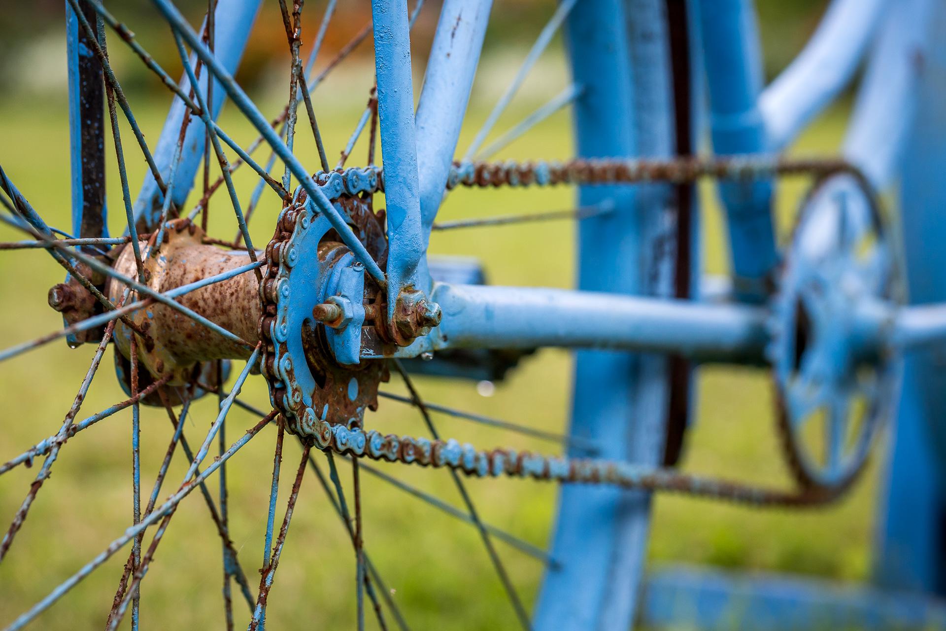 blue bike chain